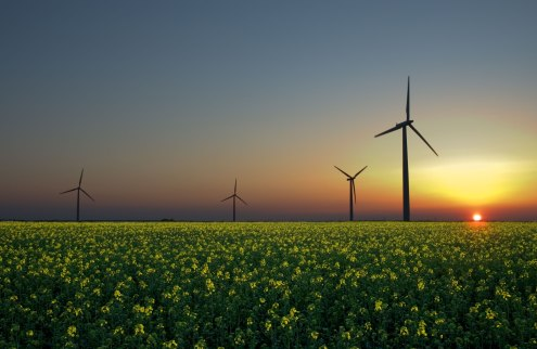 """Alternative Energies"" by Jürgen from Sandesneben, Germany - Flickr. Licensed under CC BY 2.0 via Commons - https://commons.wikimedia.org/wiki/File:Alternative_Energies.jpg#/media/File:Alternative_Energies.jpg"